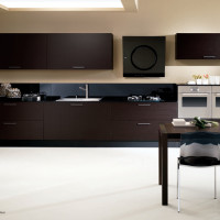 Rodi Kitchen Design in a Rovere Black finish