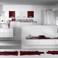 Red & White Bathroom Decor