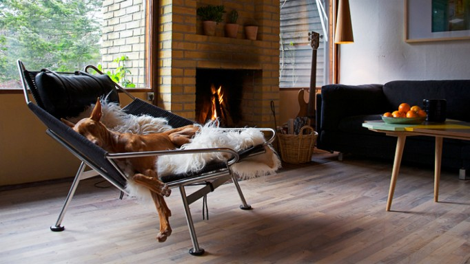 Dog Resting on Flag Halyard Lounge Chair - PP Mobler