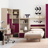 Teen Bedroom with Book Shelves