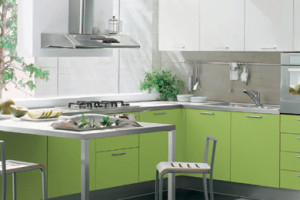 Modern Green Madison Kitchen Interior Design - FP