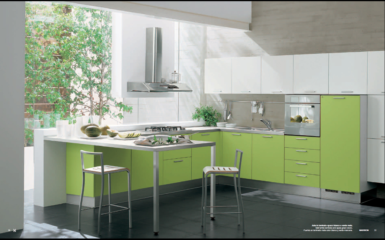 Modern green madison kitchen interior design for Kitchen interior colour