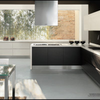 Modern Natura Aparment Kitchen Design