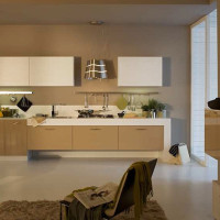 Sole Modern Kitchen Design