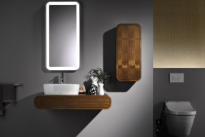 Contemporary Dark Walnut Bathroom Furniture by Toto - 01