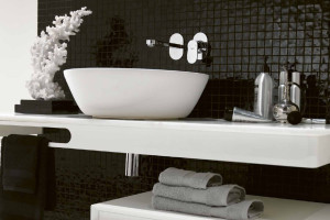 Ext Black and White Bathrooms - 5